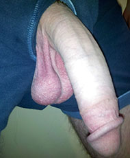 Cock pic