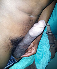 11 inch cock