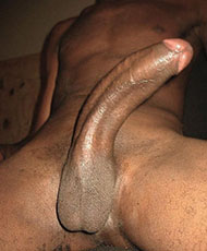 15 inch cock