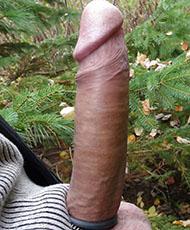 Horny cock