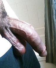 Hot hard cock