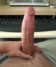Male cock picture
