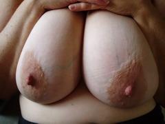 Plump babes