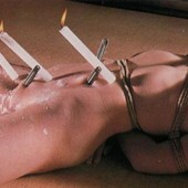 Shibari: Japan bondage Pictures