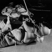 Shibari: Japan bondage Pictures