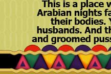 arab sex vids