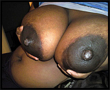 black tits video